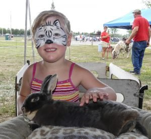 "Vanderlaand ""The Barnyard Zoo"" Amelia Milne-Servage, 5, enjoyed The Barnyard Zoo's menagerie of animals at Dairyfest. Zandbergen photo, Nation Valley News"