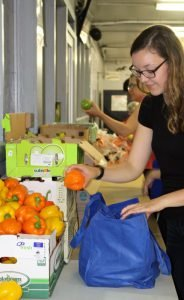 Green Food Box1589